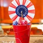 *July 4th* Celebration Inspiration