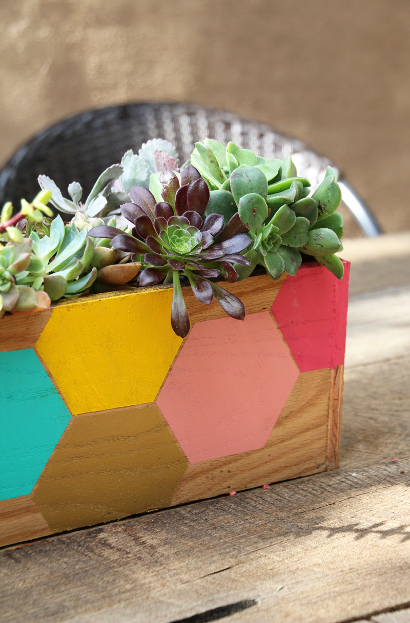 DIY Hexagon Wood Succulent Planter : PepperDesignBlog.com
