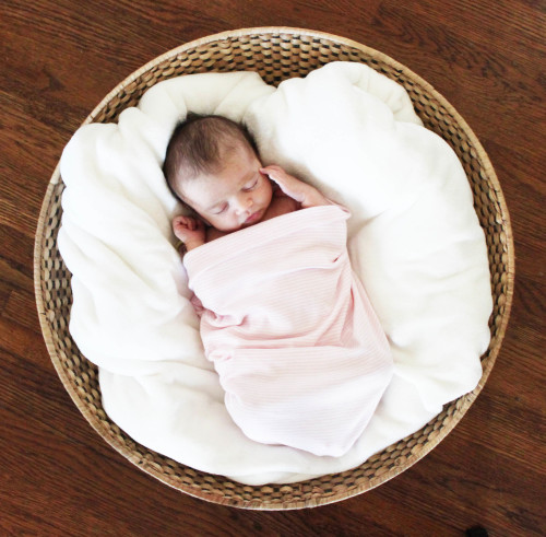 Liv's Newborn Basket Photo | PepperDesignBlog.com
