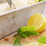 Lemon & Mint Freezer Sorbet