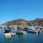 A Guide to Catalina Island
