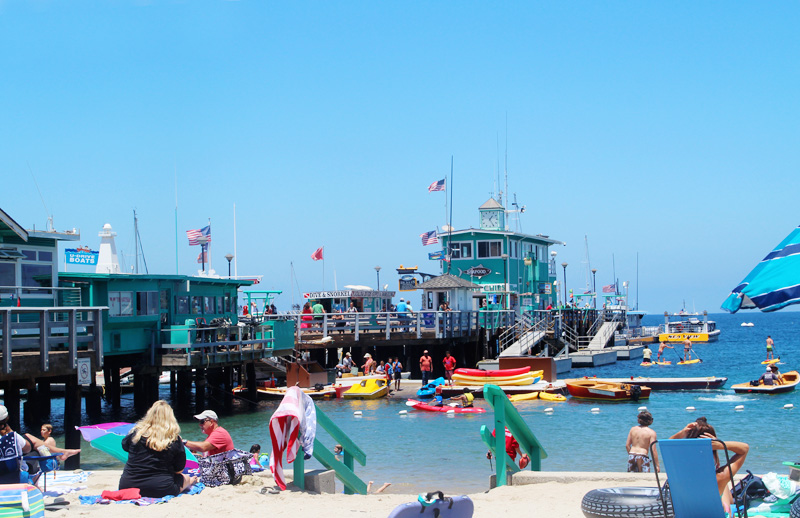 A Guide to Catalina Island | PepperDesignBlog.com