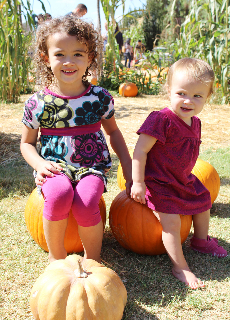 Pumpkin Patch 2014 | PepperDesignBlog.com