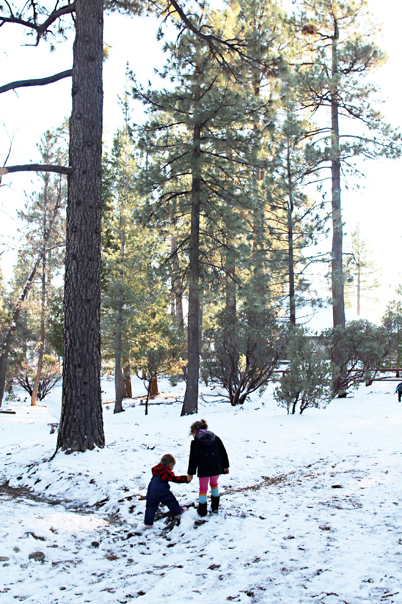 Family Snow Trip to Idyllwild | PepperDesignBlog.com