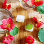 Experimenting with Edible Flowers
