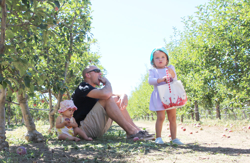 2015_julianapplepicking_family3b_1000